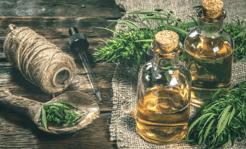 olej-konopny-w-kuchni-zastosowanie-badz-soba-z-choroba-bodylogika